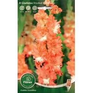 Гладиолус Frizzled Coral Lace /8 клубнелуковиц/ *Florex*